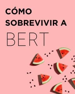 BERT SEO